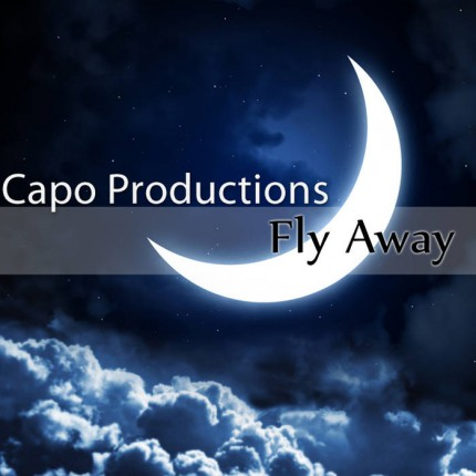 Музыкальный альбом «Fly Away»