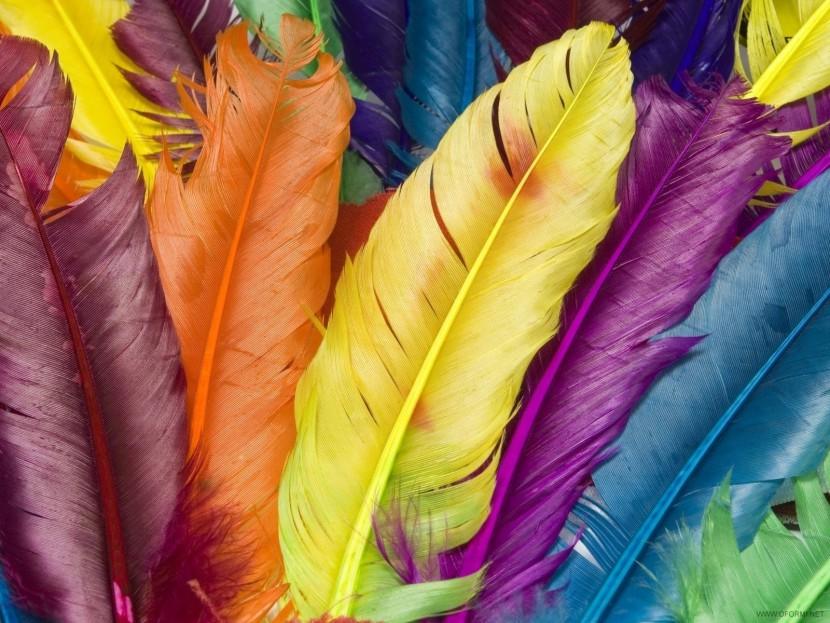 Цветотерапия — исцеление цветом