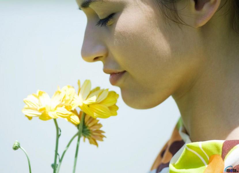 О влиянии запахов на наш мозг