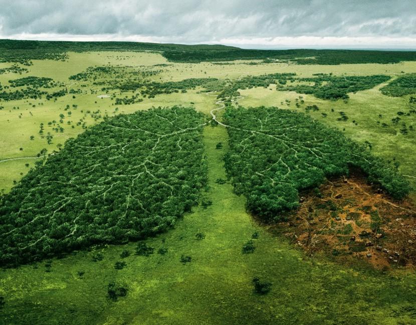 10 простых способов как спасти планету