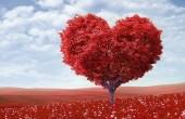Мы думаем, будто знаем, что такое любовь, и умеем любить