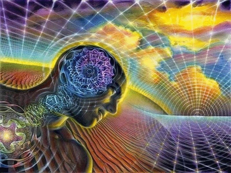 Квантовый скачок: как сознание управляет материей
