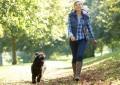 10 фактов о ходьбе, после прочтения которых хочется вытащить себя на прогулку
