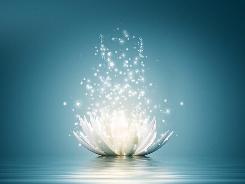 Пять принципов йоги для начала перемен
