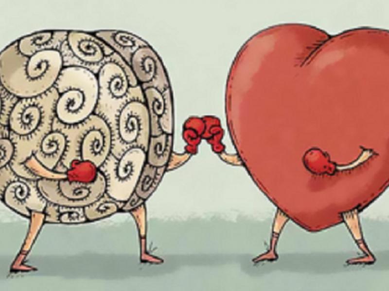 Ум и сердце – важнейшие пространства нашего существа