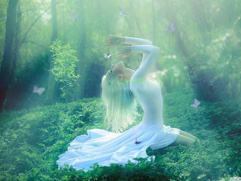 Аюрведа — жизнь в гармонии с собой