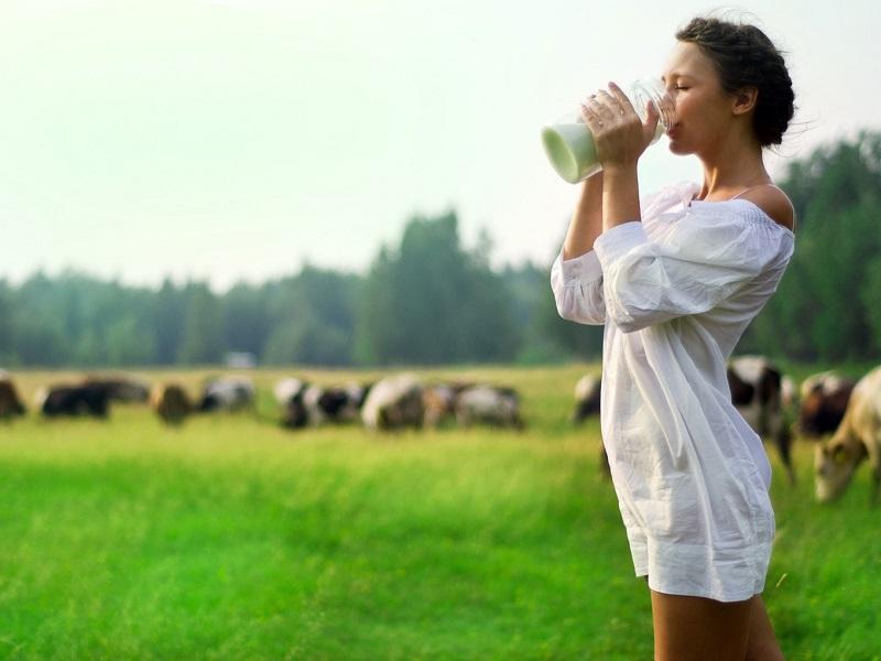 Аюрведа про молоко и кисломолочные продукты