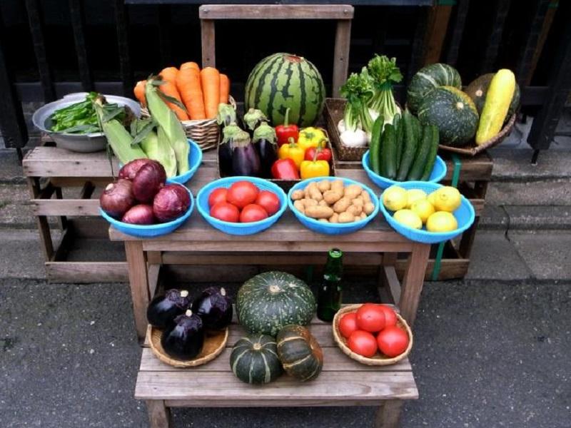 Вегетарианская диета официально признана более здоровой
