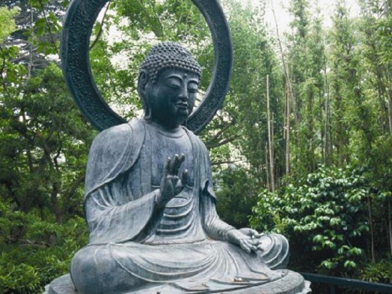 Элиза Танака. Йога и аюрведа в 10 простых уроках