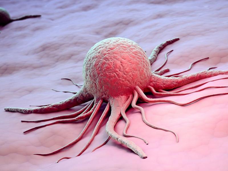 Рак, любовь и основные причины болезней