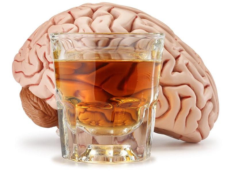 Мозг и алкоголь — Вячеслав Дубынин