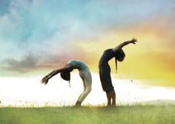 Вихара - деятельность по поддержанию жизни