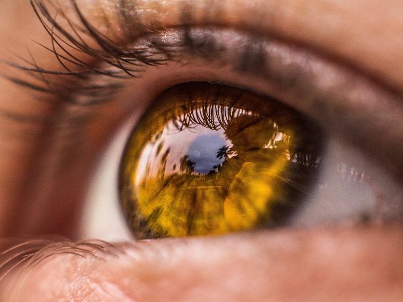 Волшебная смесь академика Филатова — для слабого зрения