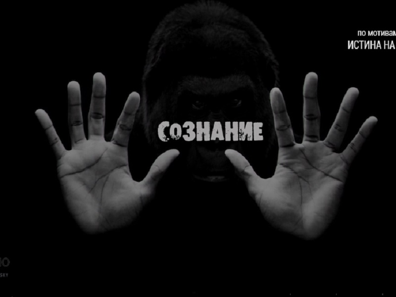 «Сознание». По мотивам передачи «Истина на всех одна» с И.М.Даниловым