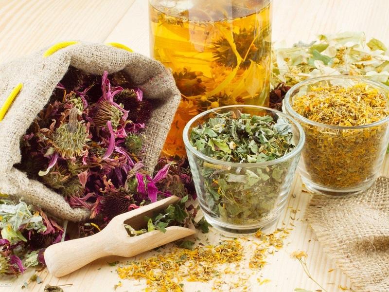 6 лучших лекарственных трав для защиты печени
