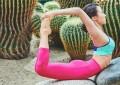 Здоровье пищеварительной системы и отличная осанка: «древняя» Дханурасана