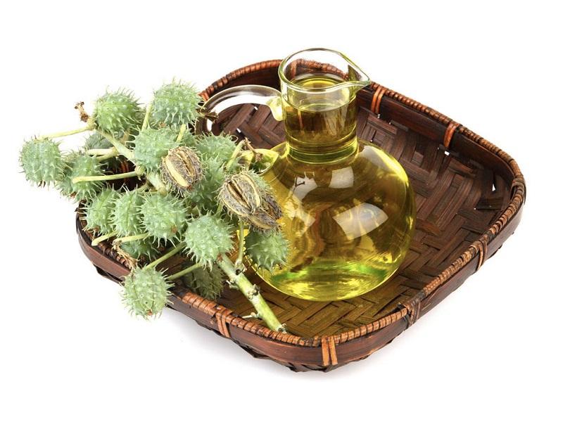 Касторовое масло: эффективное натуральное средство против вирусов, бактерий, дрожжей и плесневых грибов