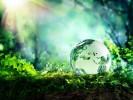 Международный день Матери-Земли (День Земли)