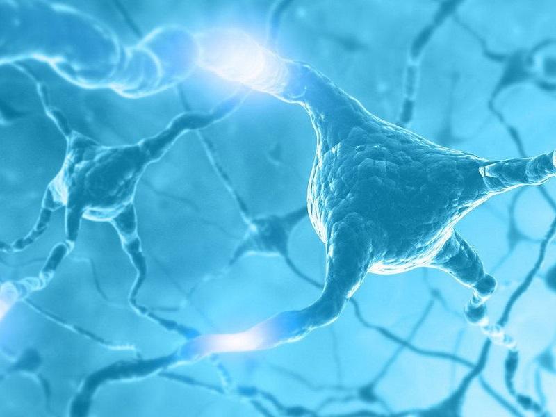 Психиатр Ричард Фридман: Как омолодить свой мозг