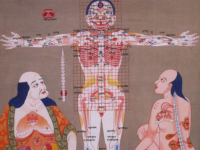 О природе человека в тибетской медицине