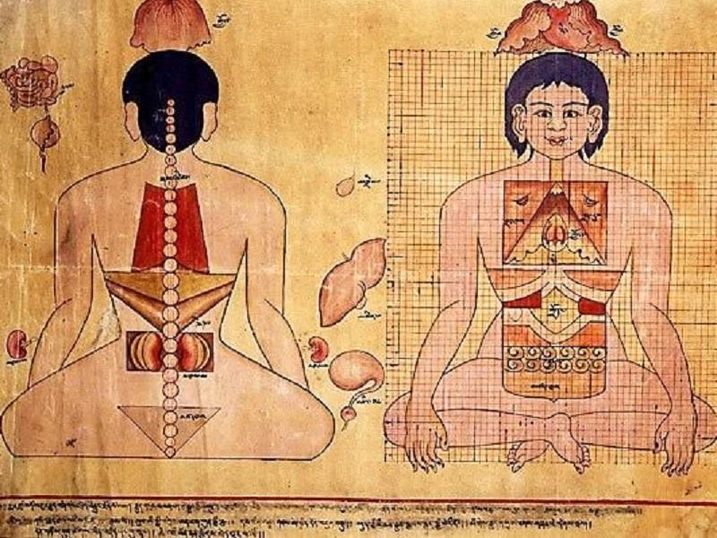 Тибетская медицина. Древнее наследие