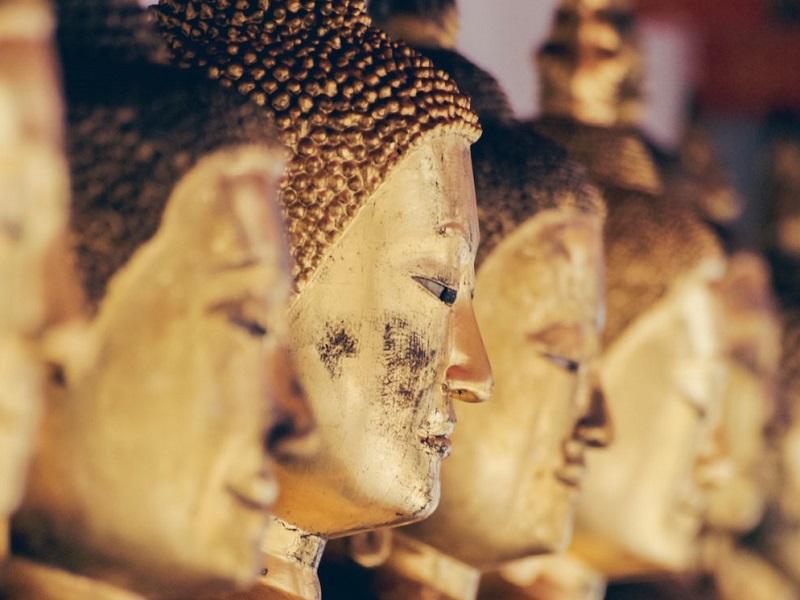 Урок тибетской медицины