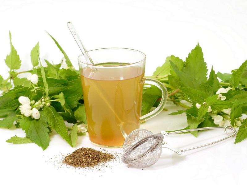 Весенний детокс: 5 рецептов с крапивой