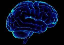 Очищение сосудов мозга: уникальные методики