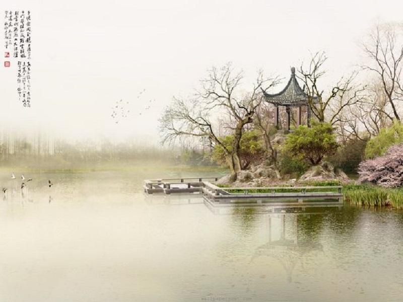 Поведение и образ жизни летом с точки зрения традиционной китайской медицины