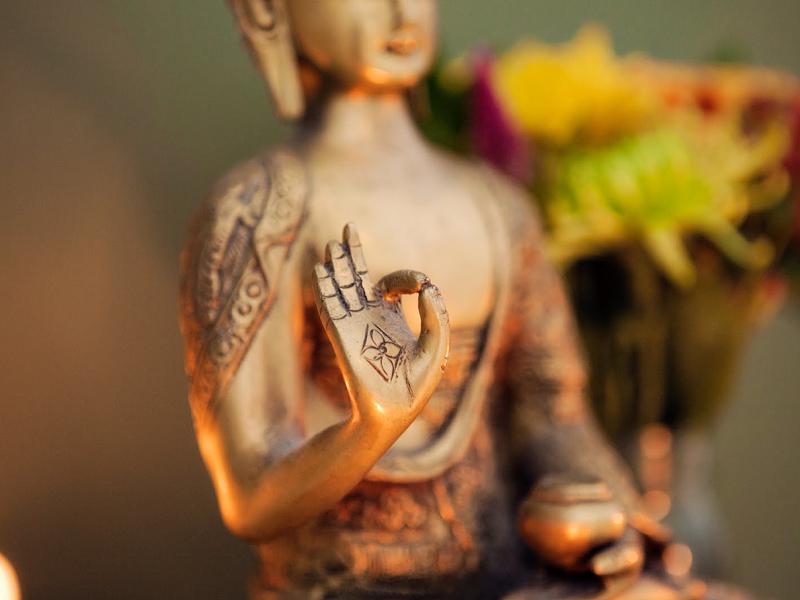 Йога и Аюрведа как единая совершенная система искусства жизни