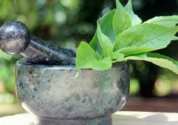 Аюрведические препараты древние рецепты по-лицензии