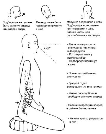 Что есть Дзен zazen-posture-expl