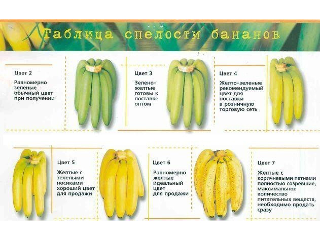 spelost-bananov
