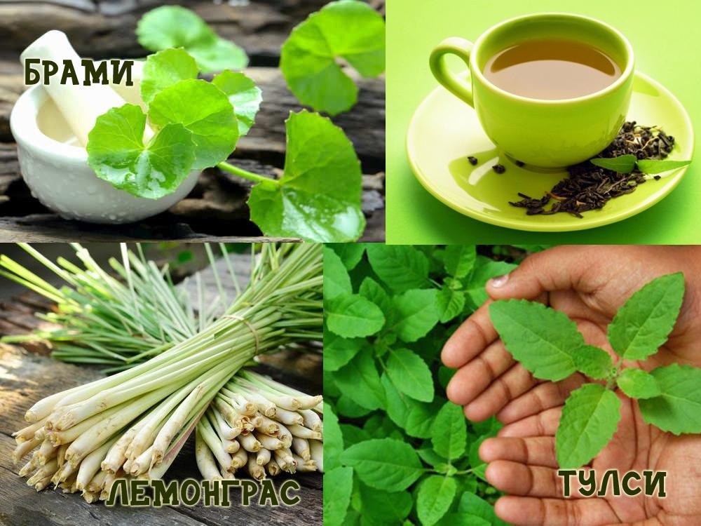 Индийская кухня - сокровищница лечебных лекарств-1