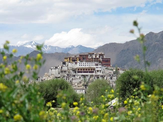 9 вещей, которые нужно знать перед посещением буддийского монастыря в Ладакхе!
