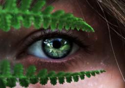 Аюрведа – здоровье глаз