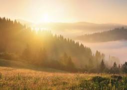 Время для получения духовного знания и счастья (Брахма-мухурта)
