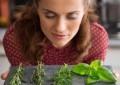 Травы, влияющие на пищеварительный огонь