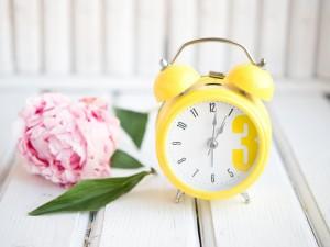 Кто рано встает - почему и как это делать хорошо аюрведа