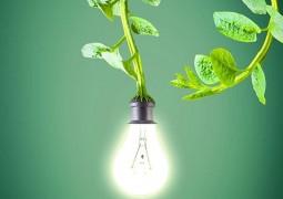 Прабхава - особая сила воздействия растений